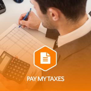 pay-my-taxes